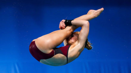Pike Position In Diving