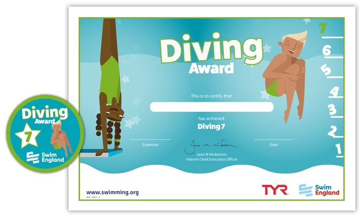 Swim England Diving Award: Stage 7