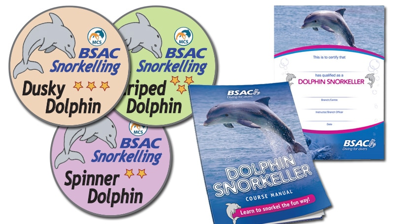 BSAC Dolphin Snorkeller Award