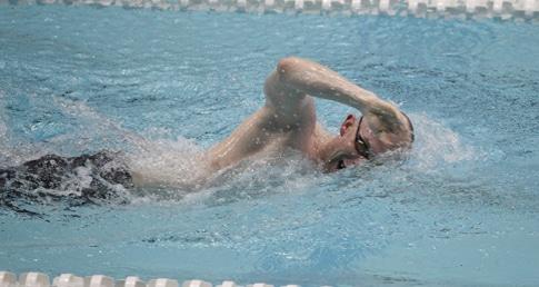 Adult Swimming Satisfaction Survey 2016