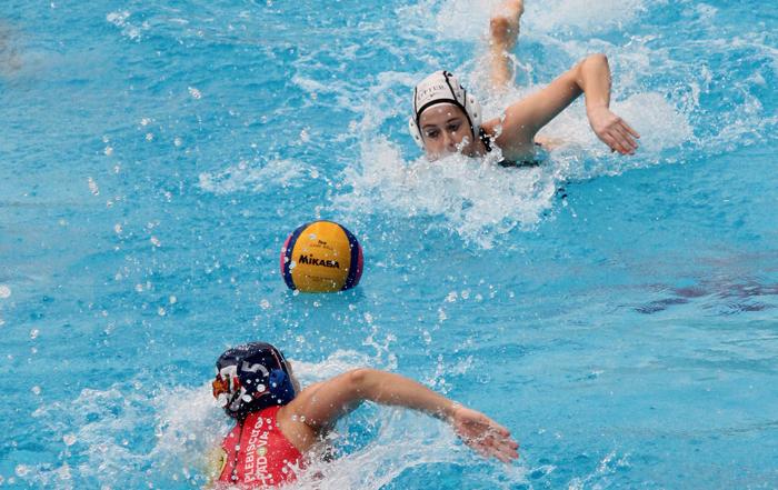 otter_padova_higlett_swim_off