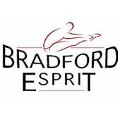City of Bradford Esprit logo jpg