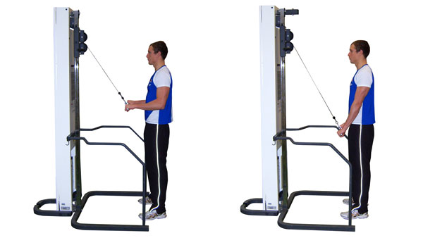 Tricep Cable Press