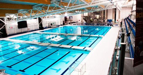 Plymouth University Water Polo Scholarship