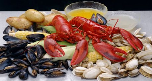 Shellfish nutrition facts for swimmers