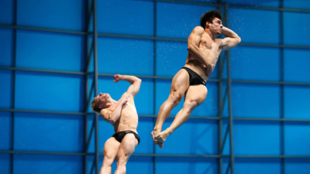 Platform and springboard diving positions and groups