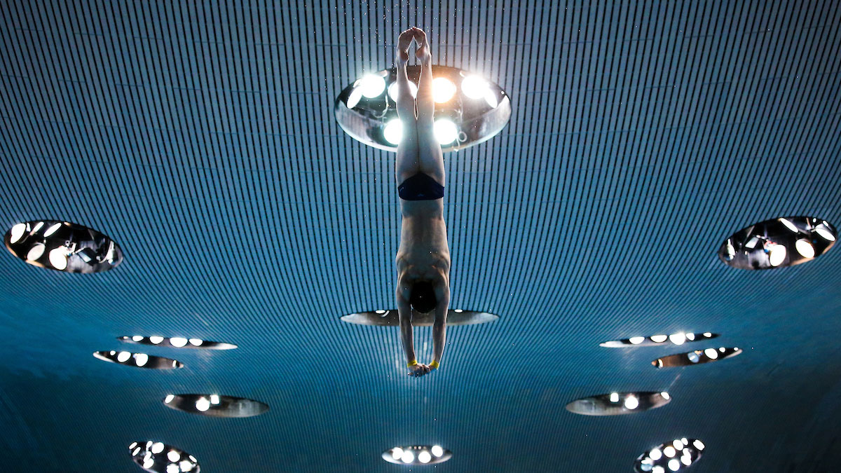 About platform and springboard diving