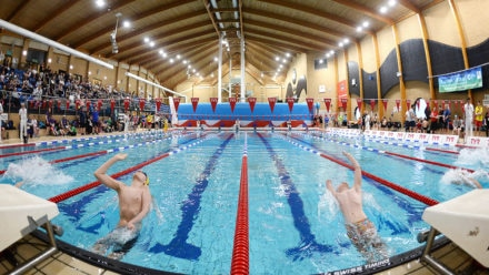 Development Day will aim to progress potential of para-swimmers