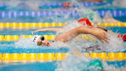 Dates when inaugural Festival of Swimming races will take place revealed