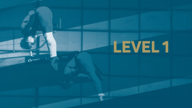 Diving Virtual Talent Search - Level 1